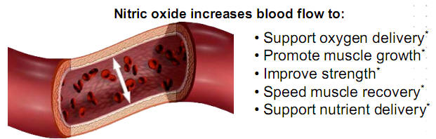 nitric oxide graphic